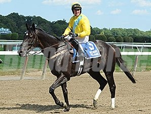 Demonstrative wins the 2014 Lonesome Glory Handicap at Belmont Park.