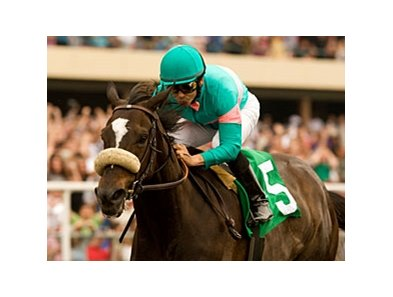 "Zenyatta<br><a target=""blank"" href=""http://www.bloodhorse.com/horse-racing/photo-store?ref=http%3A%2F%2Fpictopia.com%2Fperl%2Fgal%3Fprovider_id%3D368%26ptp_photo_id%3D9065986%26ref%3Dstory"">Order This Photo</a>"