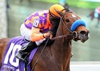 Ciao Bella Luna won the 2013 Beaumont Stakes.
