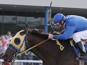 Whistle Pig wins the 2009 Presidentialaffair Handicap.