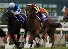 "Verxina (left) has finished second in all three jewels of Japan's Triple Crown for fillies this season.<br><a target=""blank"" href=""http://photos.bloodhorse.com/AtTheRaces-1/at-the-races-2012/22274956_jFd5jM#!i=2148927181&k=NpfnhdZ"">Order This Photo</a>"