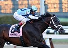 BC Dirt Mile to be Last Race for Verrazano