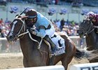 "Tiz Miz Sue<br><a target=""blank"" href=""http://photos.bloodhorse.com/AtTheRaces-1/at-the-races-2013/27257665_QgCqdh#!i=2542445694&k=n5Wpdgx"">Order This Photo</a>"