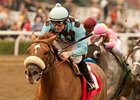 "Aggie Engineer will try to continue his winning streak in the San Antonio.<br><a target=""blank"" href=""http://www.bloodhorse.com/horse-racing/photo-store?ref=http%3A%2F%2Fpictopia.com%2Fperl%2Fgal%3Fprovider_id%3D368%26ptp_photo_id%3D9361426%26ref%3Dstory"">Order This Photo</a>"