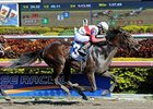 "Orb<br><a target=""blank"" href=""http://photos.bloodhorse.com/AtTheRaces-1/at-the-races-2013/27257665_QgCqdh#!i=2337169967&k=J6gKVTK"">Order This Photo</a>"