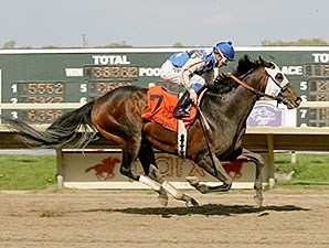 Officer Alex wins the 2014 Lyman Handicap.