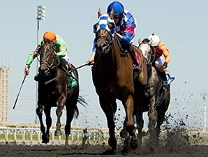 Eighty Nine Red wins the 2014 Achievement Stakes.
