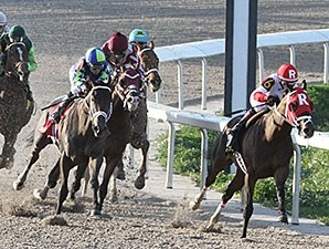 Vicar's In Trouble wins the 2014 Louisiana Derby.