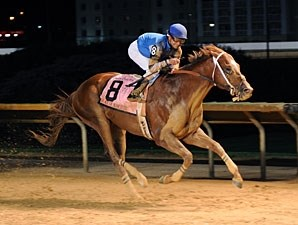 Duke of Mischief wins the 2011 Charles Town Classic.