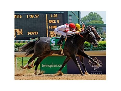 "Unrivaled Belle defeated 2009 Horse of the Year Rachel Alexandra in her last start.<br><a target=""blank"" href=""http://www.bloodhorse.com/horse-racing/photo-store?ref=http%3A%2F%2Fpictopia.com%2Fperl%2Fgal%3Fprovider_id%3D368%26ptp_photo_id%3D8937171%26ref%3Dstory"">Order This Photo</a>"