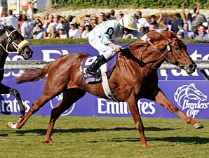 Euros Have Big Edge in Breeders' Cup Turf