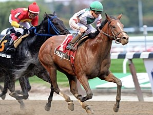 Palace wins the 2013 Hudson Stakes.