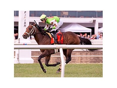 Tate's Landing won the Laurel Futurity on turf Oct. 27.