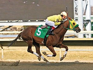 Rapid Redux remains undefeated at 16 on 2/26/2011.