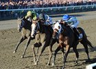 "47,597 saw Will Take Charge win the Travers.<br><a target=""blank"" href=""http://photos.bloodhorse.com/AtTheRaces-1/at-the-races-2013/27257665_QgCqdh#!i=2721305715&k=2n73BND"">Order This Photo</a>"