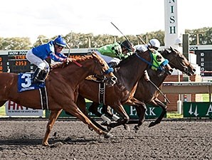Avanzare wins the 2014 Washington Park Handicap.