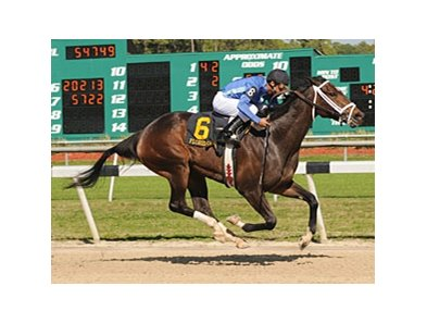 Don't Forget Gil is among those planning on challenging Rachel Alexandra in the Mother Goose.