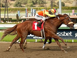 Midnight Transfer in the San Pedro Stakes.