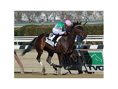 "Close Hatches leads the way in the Gazelle Stakes.<br><a target=""blank"" href=""http://photos.bloodhorse.com/AtTheRaces-1/at-the-races-2013/27257665_QgCqdh#!i=2443777191&k=qR6PHz7"">Order This Photo</a>"