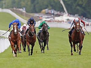 Toronado Bests Dawn Approach in Showdown