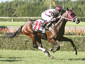 Bim Bam wins the 2009 Arthur Appleton Juvenile Turf.