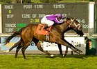 "Passion (outside) outduels Ariege in the La Habra.<br><a target=""blank"" href=""http://www.bloodhorse.com/horse-racing/photo-store?ref=http%3A%2F%2Fpictopia.com%2Fperl%2Fgal%3Fprovider_id%3D368%26ptp_photo_id%3D3474657%26ref%3Dstory"">Order This Photo</a>"