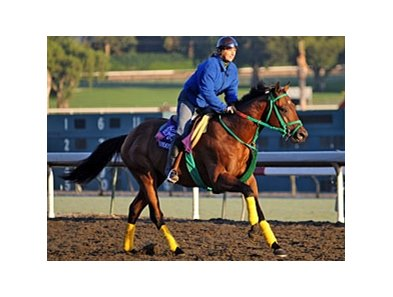 Smooth Air is one of 10 Breeders' Cup starters in the Race for Education program.