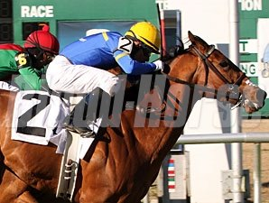 Wild About Marie wins the 2011 Dr. A. B. Leggio Memorial Stakes.