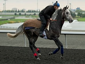 Reliable Man - Woodbine, October 10, 2012.