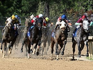 Cyber Secret wins the 2013 Oaklawn Handicap.