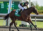 Gypsy Robin Bobs Along for Beaumont Victory