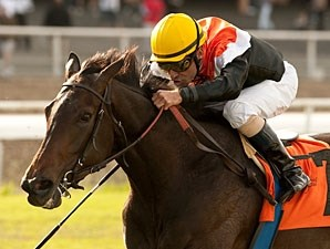 Marketing Mix wins the Gamely Stakes.