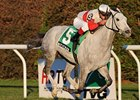 Hit It Rich won the 2011 Long Island Handicap.