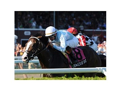 "Courageous Cat makes his seasonal debut in the Canadian Turf.<br><a target=""blank"" href=""http://www.bloodhorse.com/horse-racing/photo-store?ref=http%3A%2F%2Fpictopia.com%2Fperl%2Fgal%3Fprovider_id%3D368%26ptp_photo_id%3D8405422%26ref%3Dstory"">Order This Photo</a>"