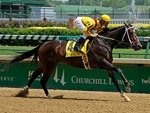 Confident Rachel Blooms Again in Fleur de Lis