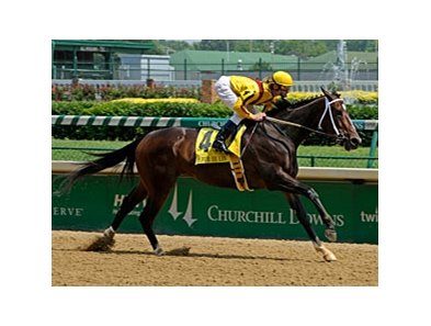 Rachel Alexandra romps in the Fleur de Lis.