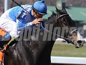 Orchestrator wins the 2010 Bourbonette.