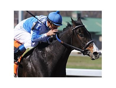 "Orchestrator and Alex Solis take the Bourbonette.<br><a target=""blank"" href=""http://www.bloodhorse.com/horse-racing/photo-store?ref=http%3A%2F%2Fpictopia.com%2Fperl%2Fgal%3Fprovider_id%3D368%26ptp_photo_id%3D8863505%26ref%3Dstory"">Order This Photo</a>"