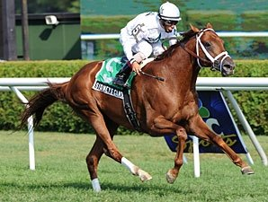 Sidney's Candy Captures Fourstardave in Style