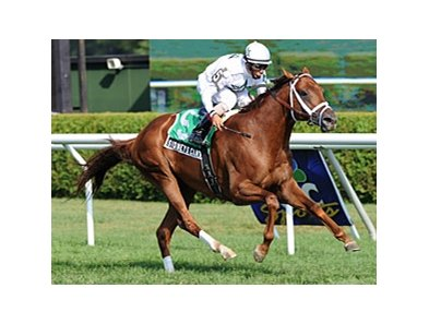 Sidney's Candy wins the Fourstardave Handicap.