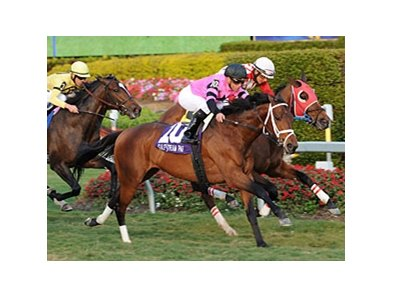 "Silver Medallion gets up late to win the Ft. Lauderdale at Gulfstream Park.<br><a target=""blank"" href=""http://www.bloodhorse.com/horse-racing/photo-store?ref=http%3A%2F%2Fpictopia.com%2Fperl%2Fgal%3Fprovider_id%3D368%26ptp_photo_id%3D9799146%26ref%3Dstory"">Order This Photo</a>"
