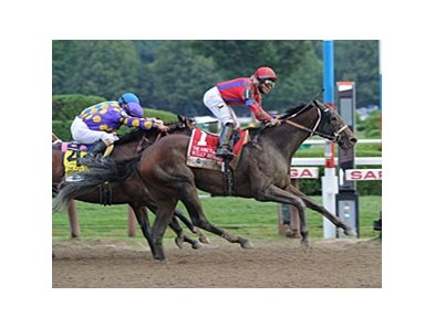 "Willy Beamin won the King's Bishop Stakes at seven furlongs on Aug. 25.<br><a target=""blank"" href=""http://photos.bloodhorse.com/AtTheRaces-1/at-the-races-2012/22274956_jFd5jM#!i=2047002796&k=mv7x8q8"">Order This Photo</a>"