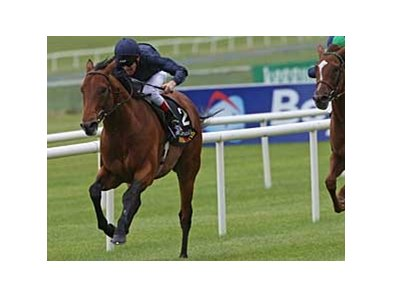 Duke of Marmalade takes the Tattersall's Gold Cup (Ire-I) May 25 at the Curragh.
