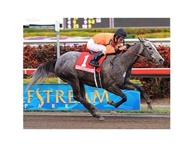 "The rest will be chasing High Resolve in the Las Flores.<br><a target=""blank"" href=""http://www.bloodhorse.com/horse-racing/photo-store?ref=http%3A%2F%2Fpictopia.com%2Fperl%2Fgal%3Fprovider_id%3D368%26ptp_photo_id%3D7535420%26ref%3Dstory"">Order This Photo</a>"