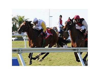 "Society's Chairman charges late to win the Appleton.<br><a target=""blank"" href=""http://www.bloodhorse.com/horse-racing/photo-store?ref=http%3A%2F%2Fpictopia.com%2Fperl%2Fgal%3Fprovider_id%3D368%26ptp_photo_id%3D8849916%26ref%3Dstory"">Order This Photo</a>"