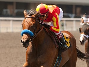 Executiveprivilege wins the 2012 Landaluce.