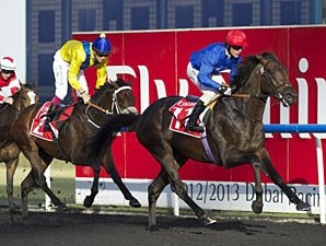 Secret Number wins the 2013 Al Bastakiya.