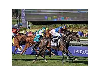 "Magician wins the 2013 Breeders' Cup Turf.  <br><a target=""blank"" href=""http://photos.bloodhorse.com/BreedersCup/2013-Breeders-Cup/Turf/33149938_WkWzN9#!i=2878409455&k=HvPJJrN"">Order This Photo</a>"