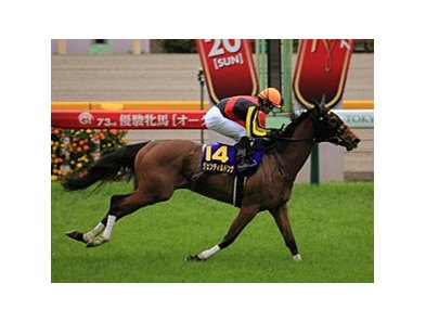 Gentildonna wins the Yushun Himba Japanese Oaks.