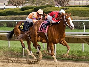 Our Lady in Red wins the 2011 Pretty Jenny Stakes.